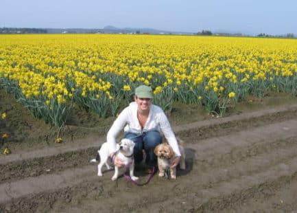 Meghan Pembroke's dogs